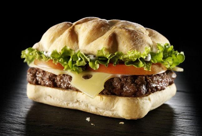 The France Burger
